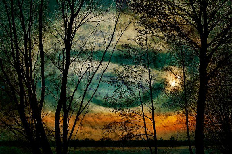 Nature lake  van Michael Nägele
