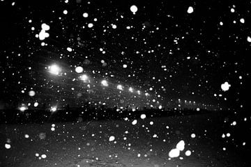 Snowstorm van Tony Lams