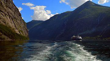 Fjord in Noorwegen van Willem van den Berge