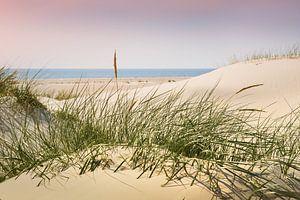 Nordsee Charme und Eleganz
