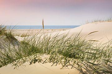 Nordsee Charme und Eleganz von Reiner Würz / RWFotoArt