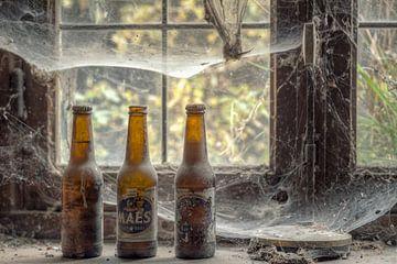 Verlaten plaats - bier met spinnenwebben van