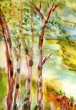 Birken am Ufer 1 von Claudia Gründler