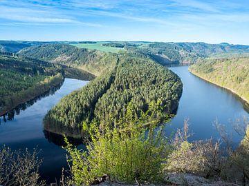 Uitzicht op de Saale Loop in Thüringen van Animaflora PicsStock