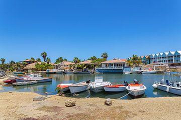Kleiner Hafen mit Booten und Häusern auf der Insel Bonaire von Ben Schonewille