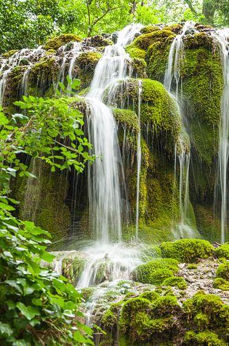 cascade 2 van