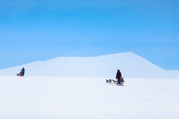 Husky sledeteams over bergpas met helder blauwe lucht