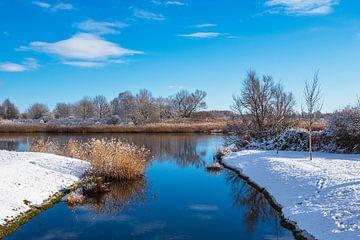 Landschap op de Warnow in Rostock in de winter van Rico Ködder