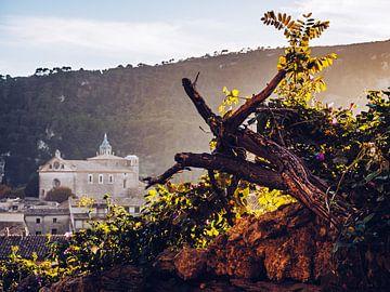 Valldemossa (Mallorca) van Alexander Voss