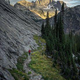 Mountain pathways van Remco van Adrichem