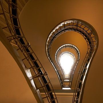 Follow the light von Scott McQuaide