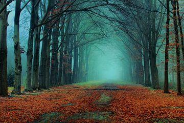 Herbst von Cees van Gastel