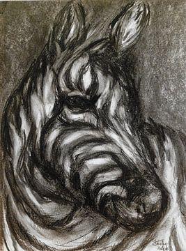 Neugieriges Zebra. von Ineke de Rijk