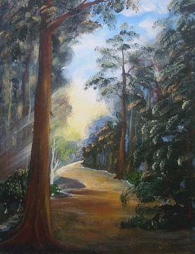 Im Wald von Anna Tabor