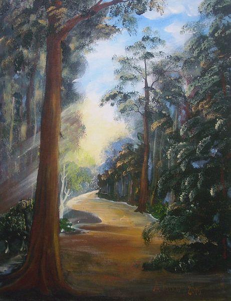 Im Wald van Anna Tabor
