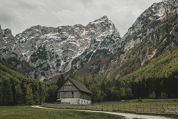 Bauernhof von Paulien van der Werf