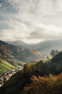 Idylle im Schwarzwald von Patrycja Polechonska