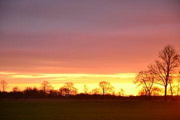 Sonnenaufgang Doezum, Groningen von Mark van der Werf