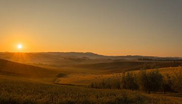 Morning Glory Tuscany van Arjen Uijttenboogaart