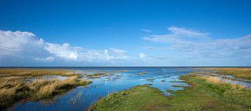 Kwelder in de Waddenzee 1 van Bo Scheeringa
