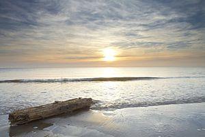 Wrakhout jutten tijdens zonsondergang op het strand van Julianadorp (2)