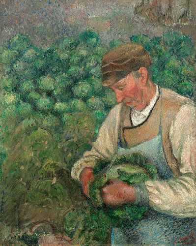 e Tuinier, Oud Boer met kool, Camille Pissarro van Liszt Collection