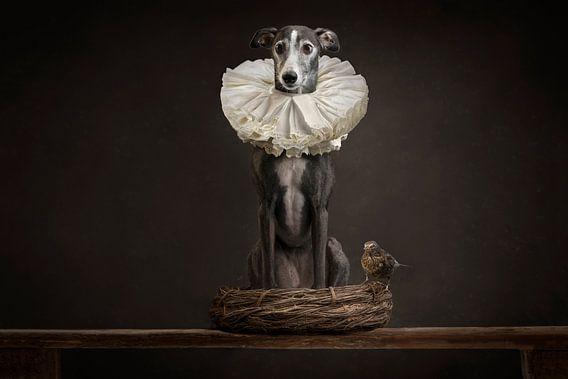 Royal dog van Nuelle Flipse