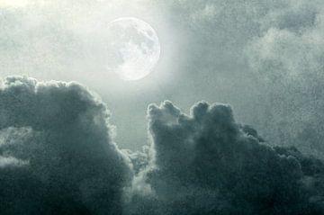 Bij volle maan II van Corinne Welp
