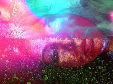 Facescape Pink van Dessin Destin