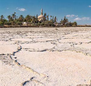 De moskee van Umm Haram aan het Larnaca zoutmeer, Larnaca, South-Cyprus van