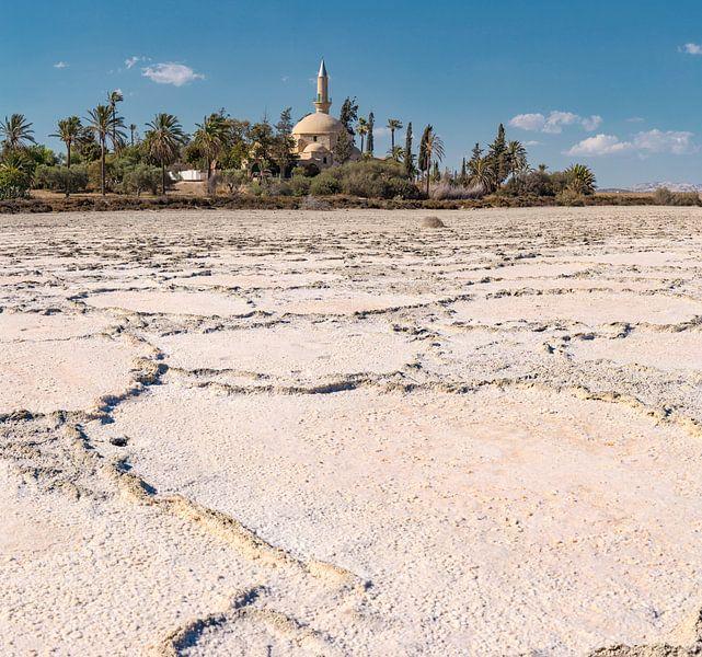 De moskee van Umm Haram aan het Larnaca zoutmeer, Larnaca, South-Cyprus van Rene van der Meer
