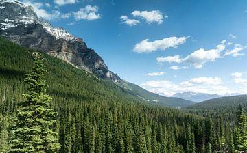 Die frische Luft in Kanada von Joris Pannemans - Loris Photography
