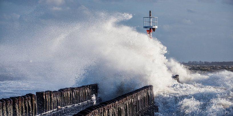 Storm van Edwin Benschop
