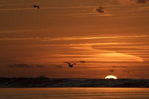 Zonsondergang aan zee van