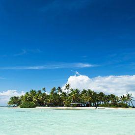 Une île inhabitée dans le Pacifique sur iPics Photography