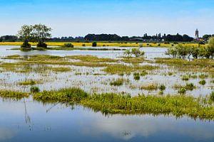 Fluss IJssel bei Zalk von Greta Lipman