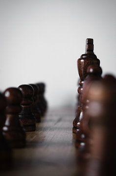 Schachspiel von Tuur Wouters