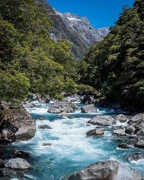 New Zealand van Anne Vermeer
