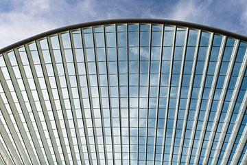 Futuristisches Dach des Bahnhofs Lüttich-Guillemins von Wim Stolwerk