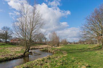 De Limburgse Bleijenbeek aan het begin  van de lente