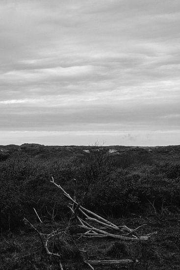 sober duinen van Stephan de Haas