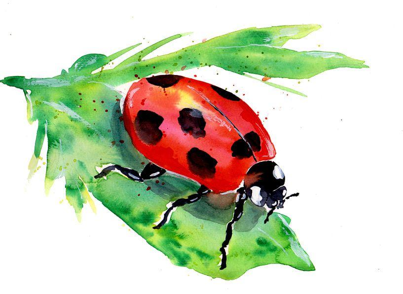Klein lieveheersbeestje op een groen blad van ZeichenbloQ