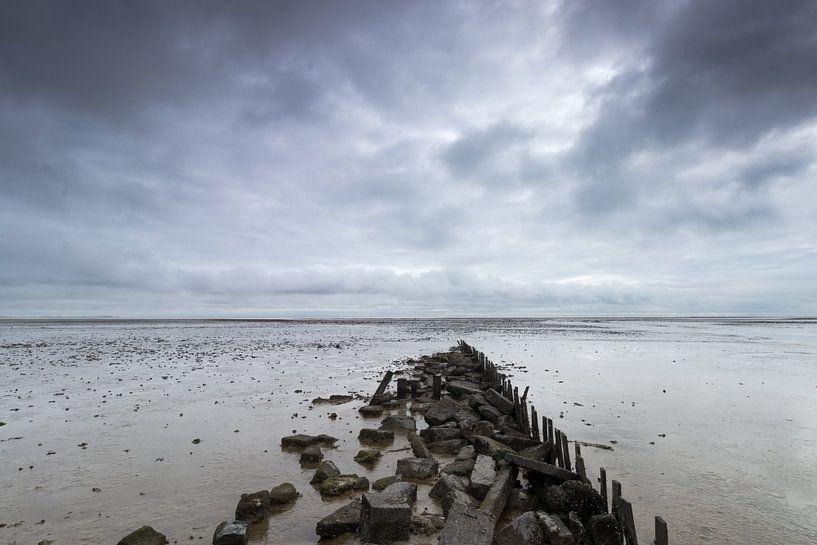 Walking in the sea. sur Nicole van As