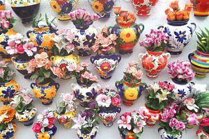 Hottentotten potten tentoonstelling