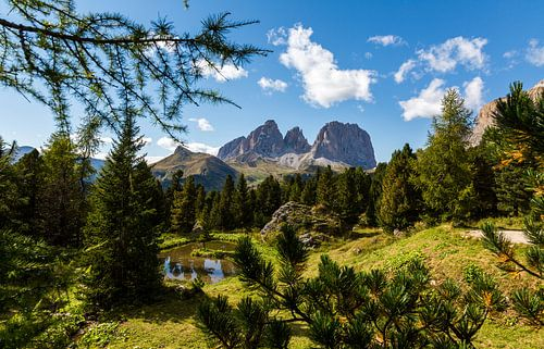 Mountain Landscape of Italy