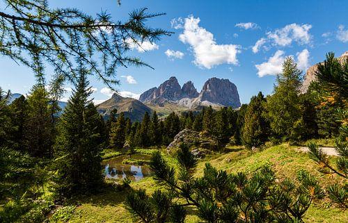Mountain Landscape of Italy van Remko Bochem