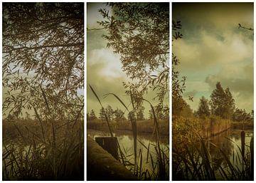 lauwersmeer triptychon 6 von anne droogsma
