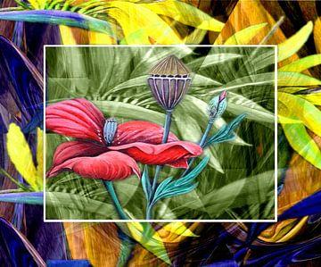 Florales (Mohn) sur Gertrud Scheffler