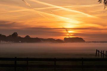 Nebel über der Wiese von Tania Perneel