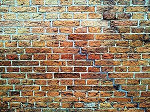 De muur komt tot leven
